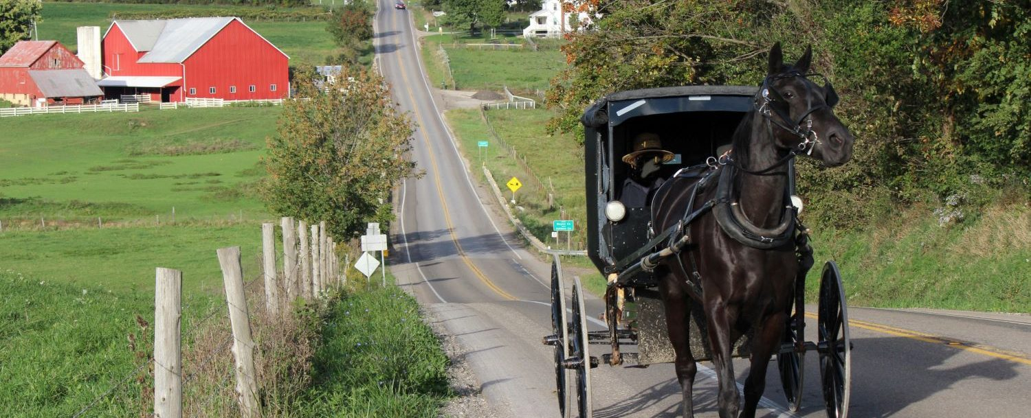 Horse and buggy riding down the road in Amish Country, Ohio